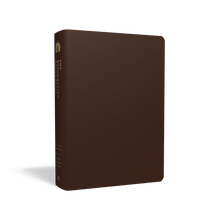 Load image into Gallery viewer, ESV Reformation Study Bible — Premium Leather Brown