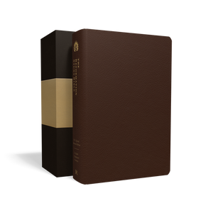 ESV Reformation Study Bible — Premium Leather Brown