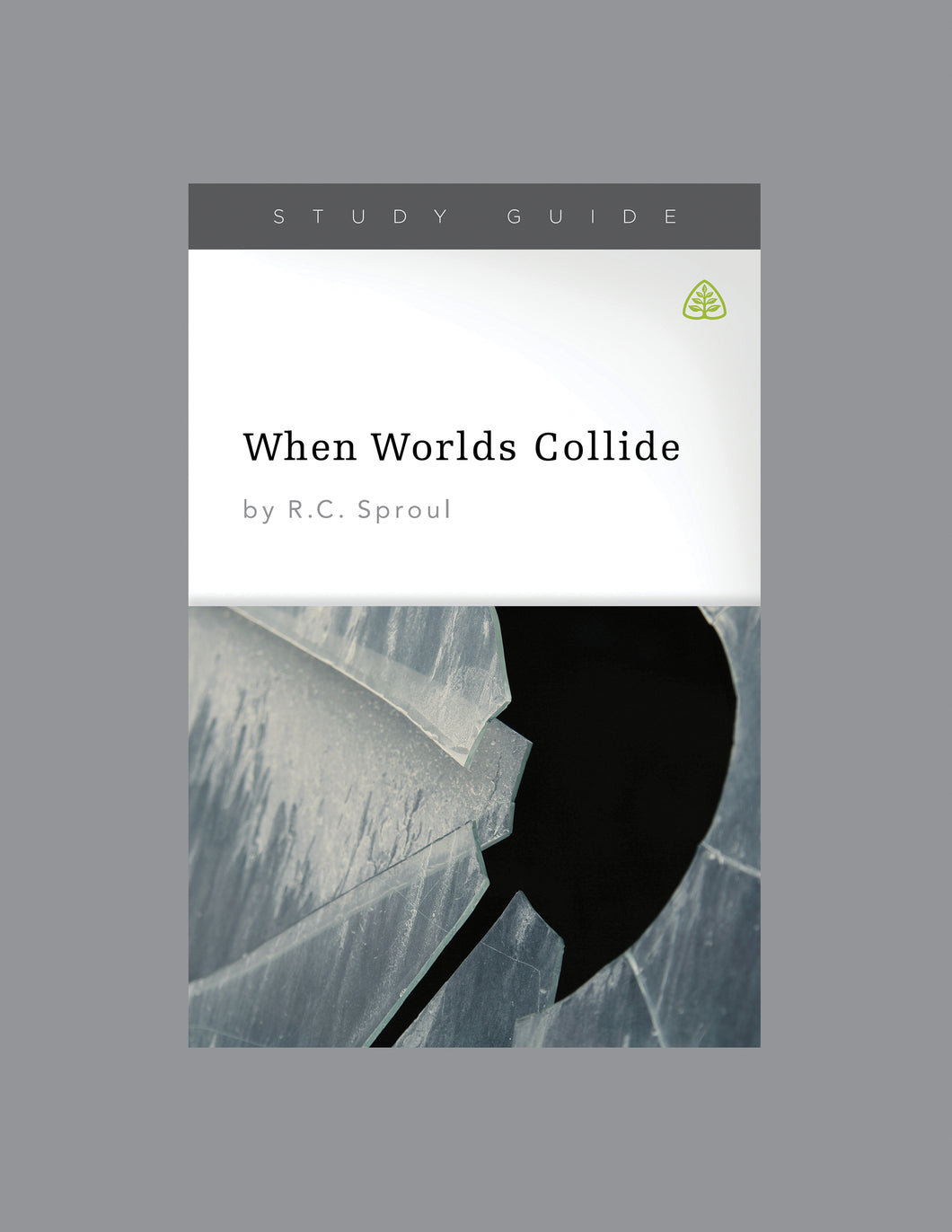 When Worlds Collide — Download Study Guide PDF (1 License)