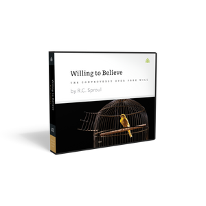 Willing to Believe — CD