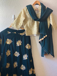 Embroidered black velvet lehenga with golden brocade blouse