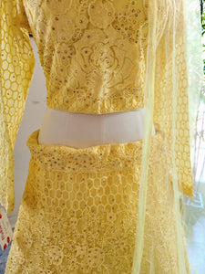 Lucknowi Lehenga set with net dupatta