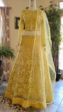 Load image into Gallery viewer, Lucknowi Lehenga set with net dupatta