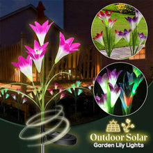 Load image into Gallery viewer, Outdoor Solar Garden Lily Lights