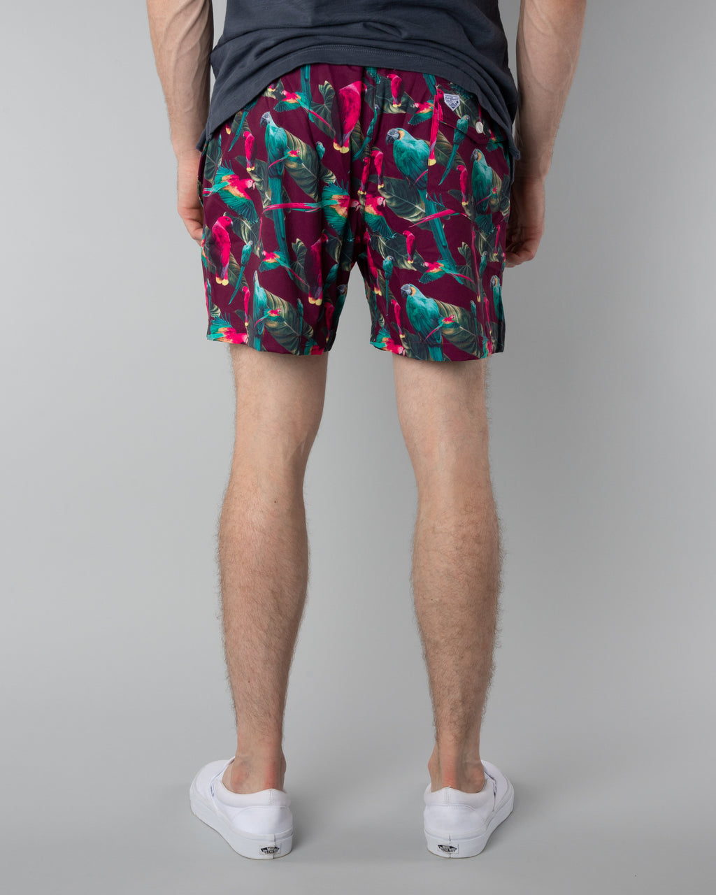 Swim Trunks ~ Tropical Birds