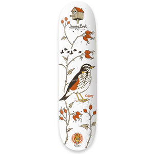 "The Drawing Boards - 8.25"" - Seasonal Birds - Redwing - Deck - Prime Delux Store"