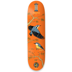 "The Drawing Boards - 7.75"" - Seasonal Birds - Nuthatch Deck - Prime Delux Store"