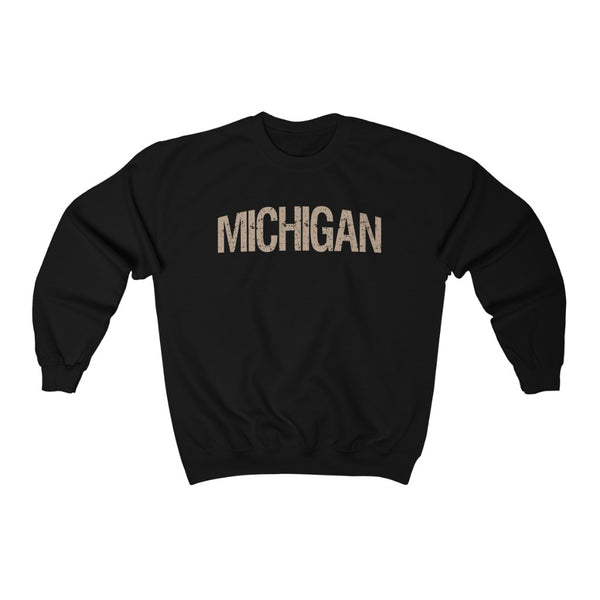 Michigan State Sweatshirt
