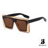 Zapp Sunglasses