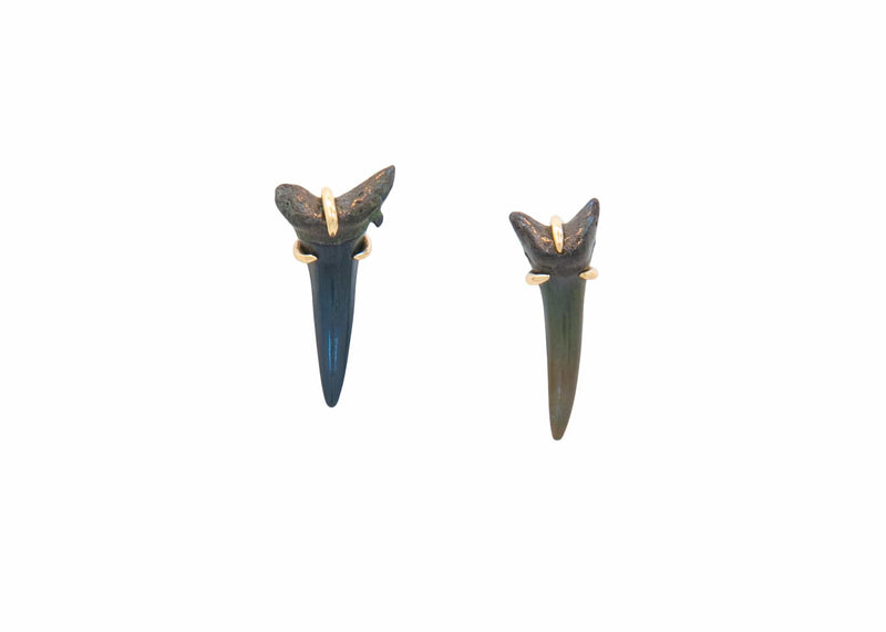 14k gold fossilized shark tooth earrings