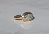 14k gold ring with snakeskin agate wrasse fish fossil