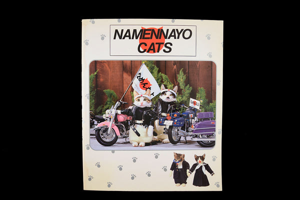 namennayo cats