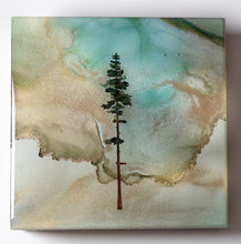 "Load image into Gallery viewer, 5"" Square Tree Block - Solstice - Mini+ #18"