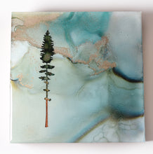 "Load image into Gallery viewer, 5"" Square Tree Block - Solstice - Mini+ #19"