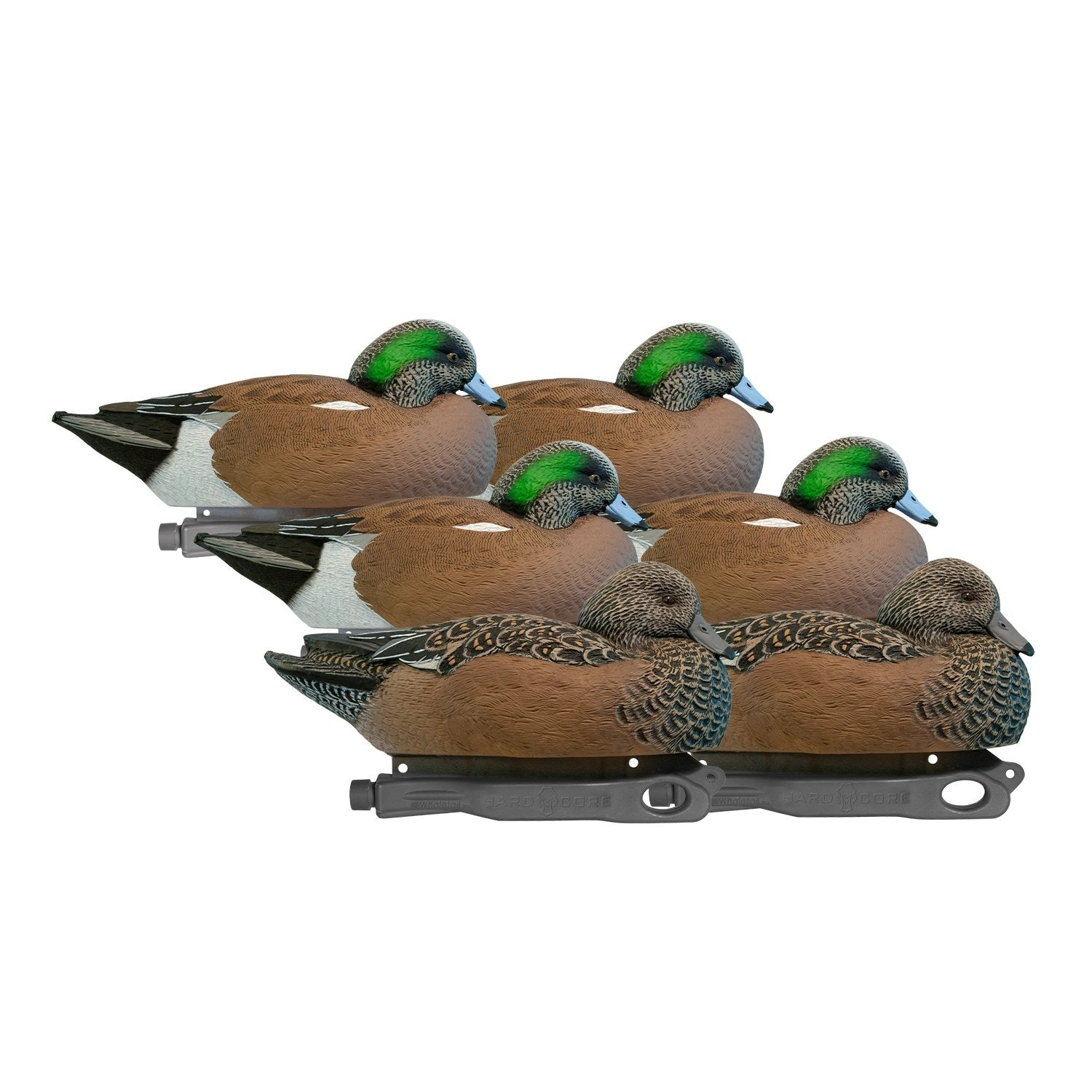 Rugged Series Wigeon