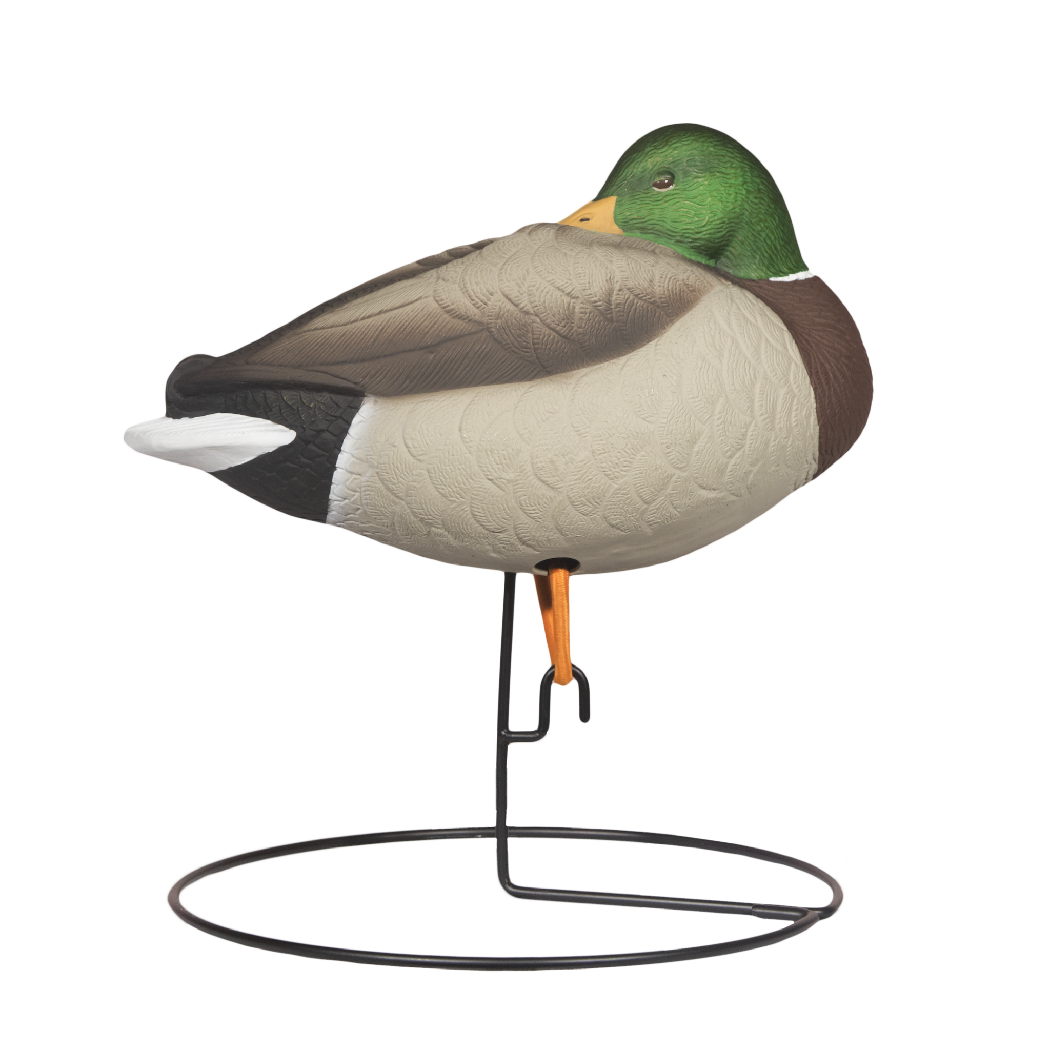 Rugged Full Body Mallard Sleeper Drake_Right Side - Painted