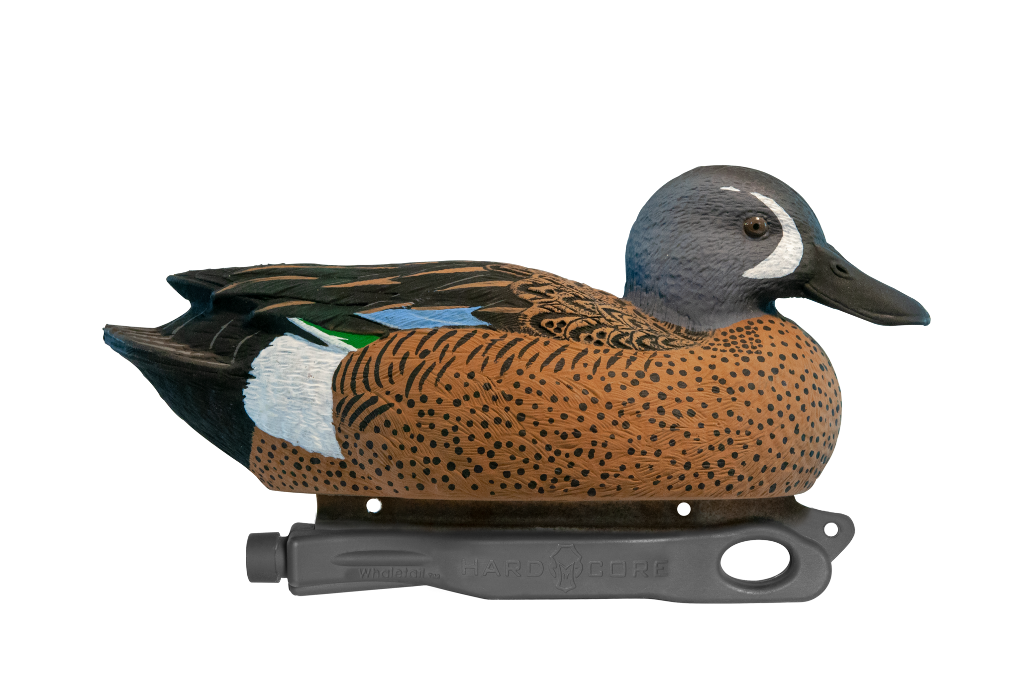 Rugged Blue-winged Teal Active Drake Floater