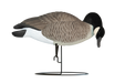 Rugged Series Full Body Canada Hungry Feeder - Flocked Head