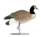 Rugged Series Full Body Canada_Relaxed Sentry - Flocked Head