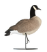 Rugged Series Full Body Canada Stubby Sentry - Flocked Head
