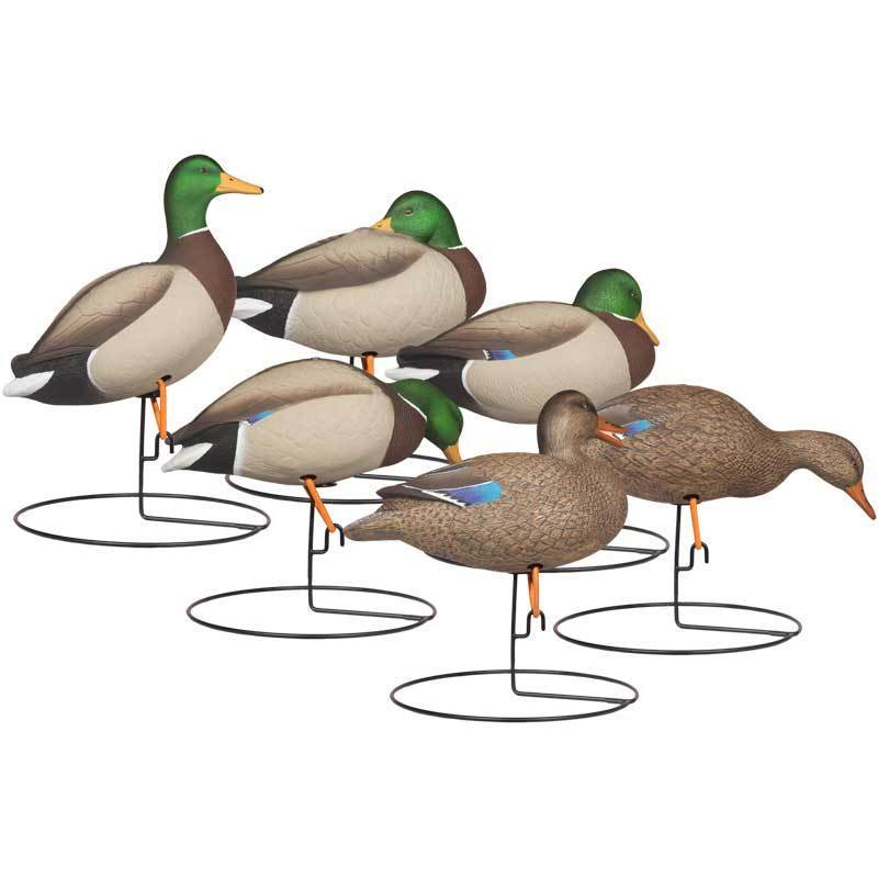 rugged-full-body-mallard-touchdown-6-pack