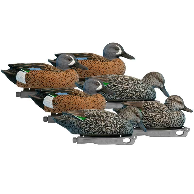 rugged-series-blue-winged-teal-6-pack