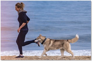 Penny Lou UK Blog   Bond With Your Dog - Woman running with dog