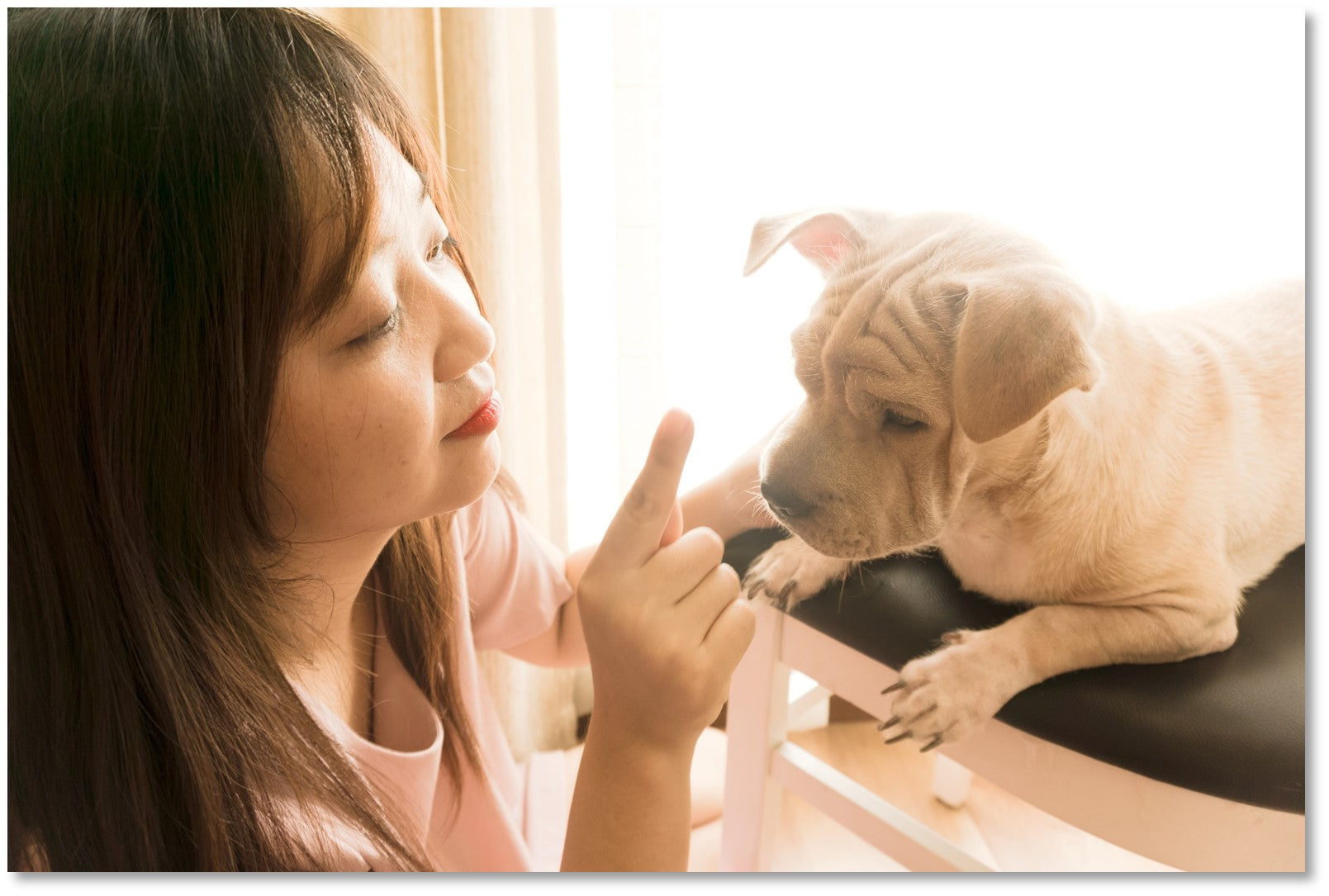 Penny Lou UK Blog   Bond With Your Dog - Woman talking to puppy