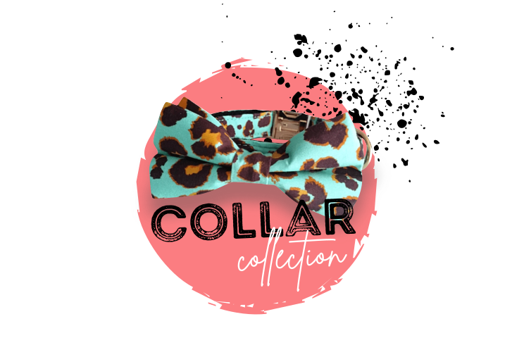 Penny Lou UK - Funky Dog Collars, Leads and Accessories   Collar Collection