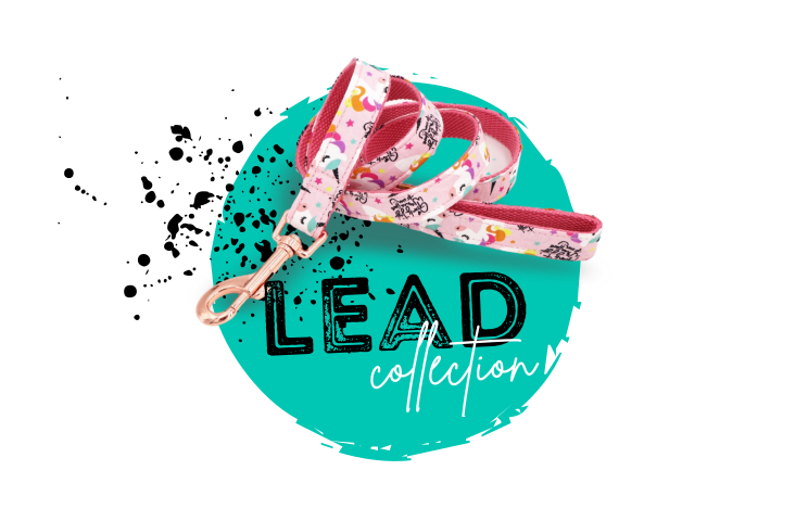 Penny Lou UK - Funky Dog Collars, Leads and Accessories | Lead Collection