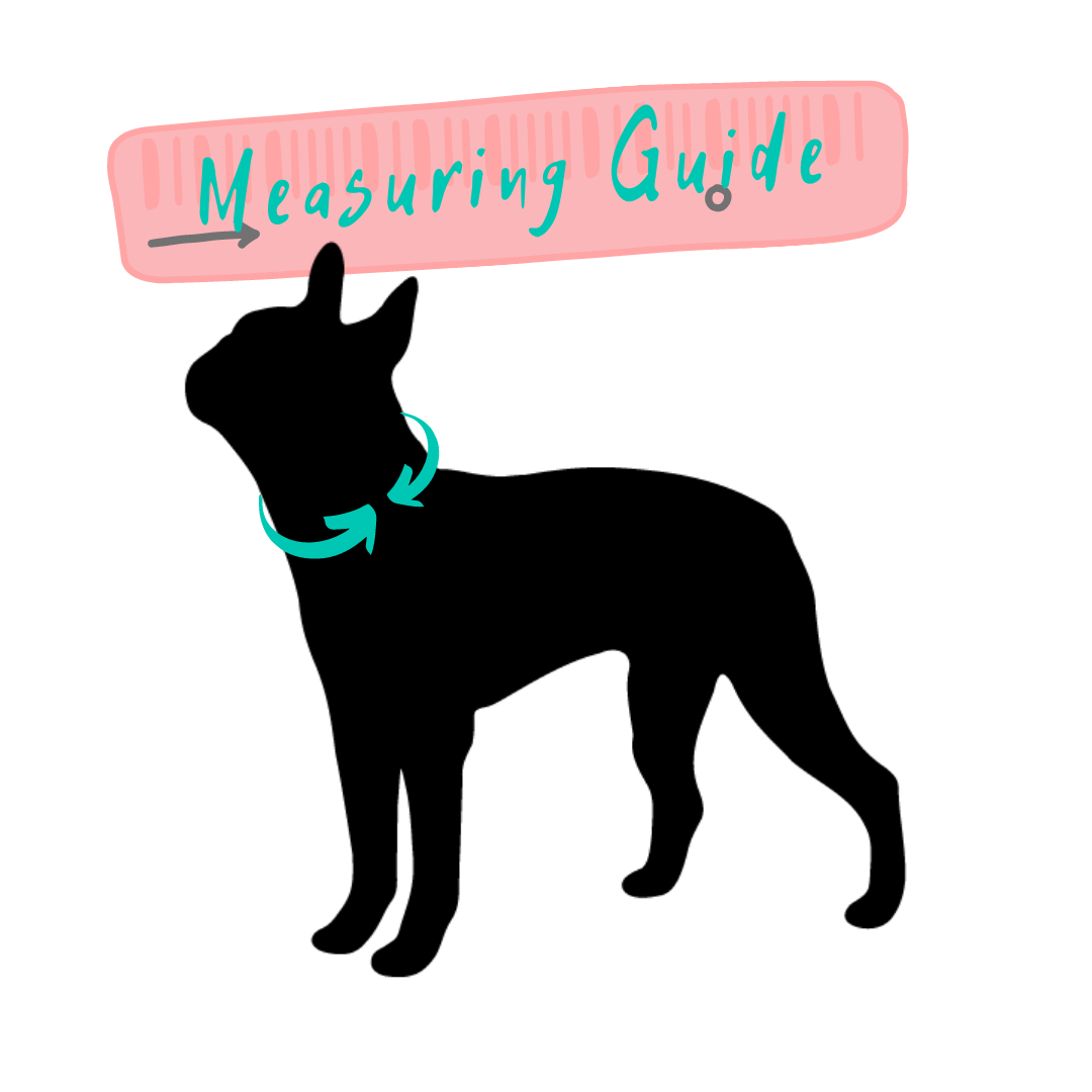 Penny Lou UK | Measuring Guide for Dog Collar