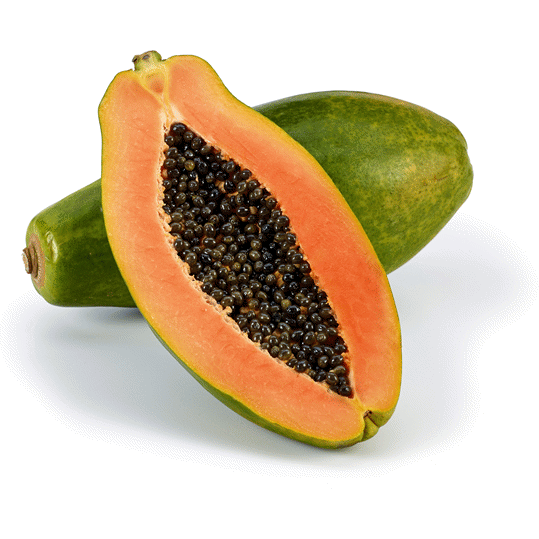 Papaya US