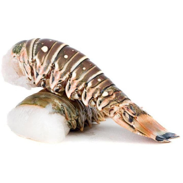 Rainforest Lobster Tail