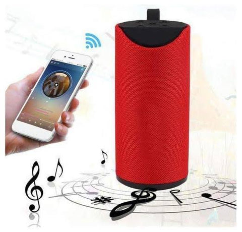 TG113 Portable Wireless Bluetooth Speaker
