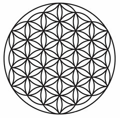 Flower of Life, Angel Chatter