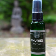 Angel  Ritual Misters - Angel Chatter - Christine Alexandria - Pure Essential Oil Angel Oil - Thuriel