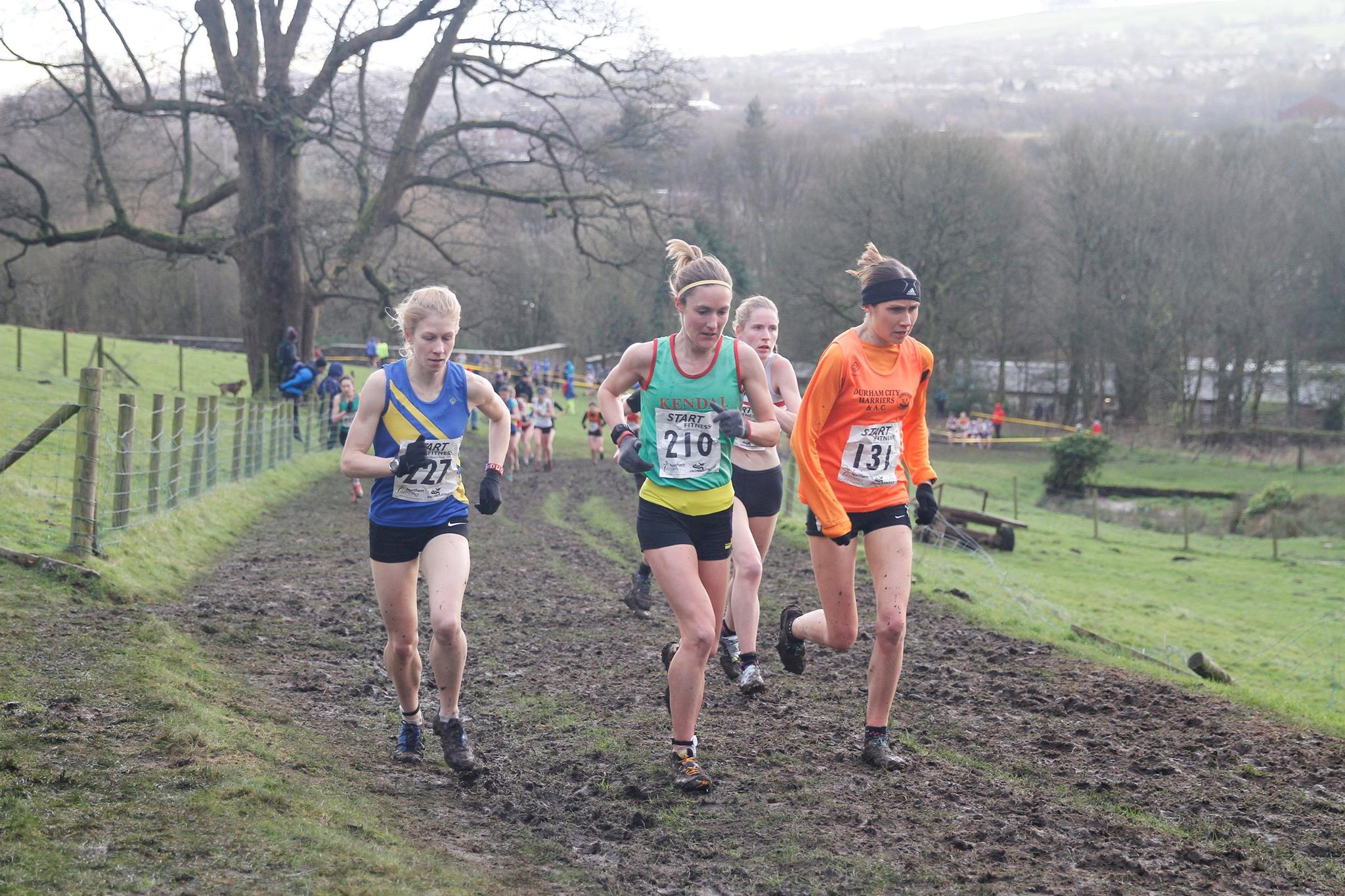 BLOG: What makes cross-country?
