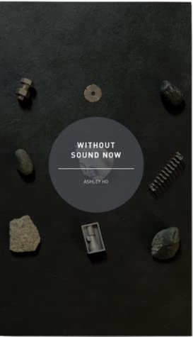 Without Sound Now,Fiction,Books