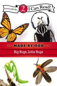 Made By God Big Bugs, Little Bugs