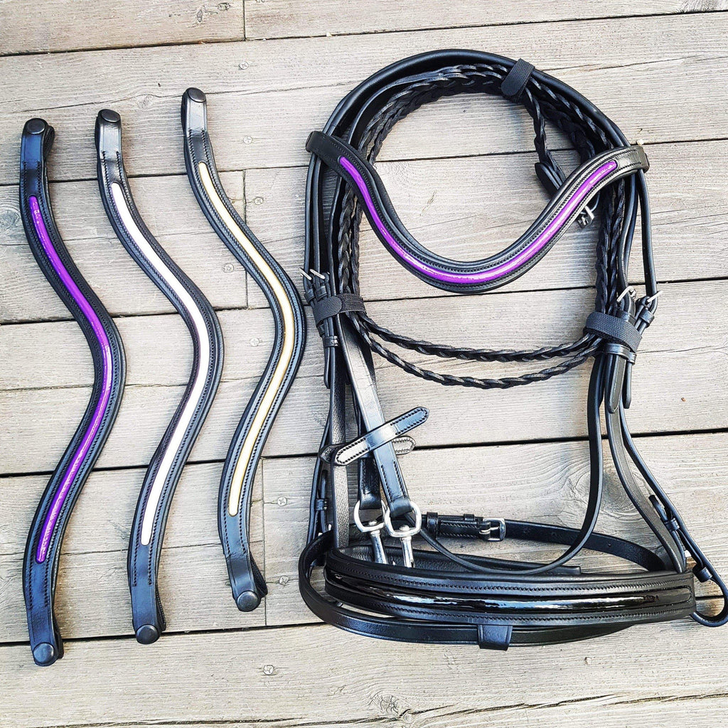 Colorsplash Bridle