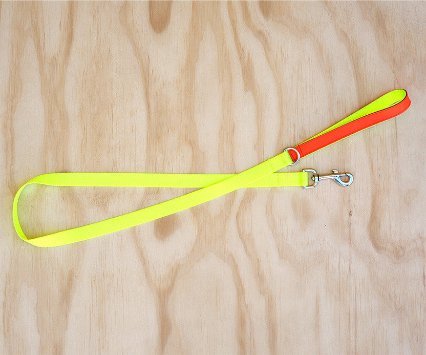 TWO TONE NYLON/LEATHER LEAD