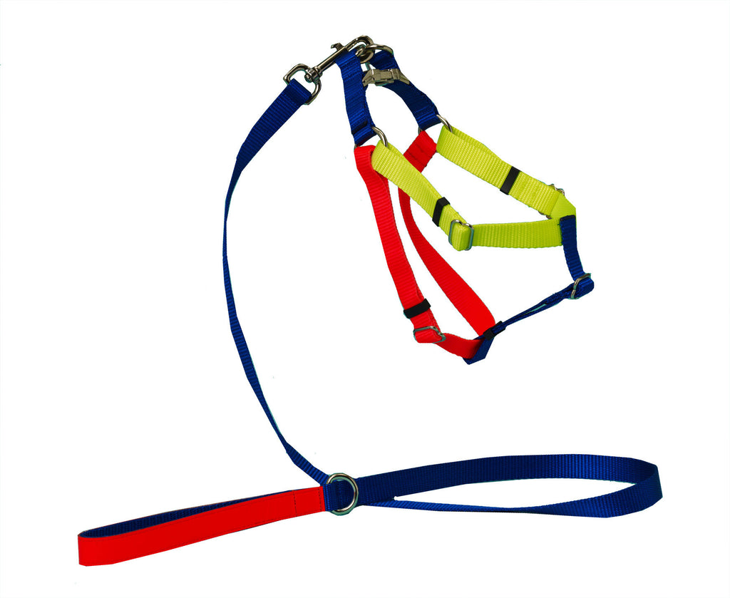 COLOURBLOCK NYLON HARNESS