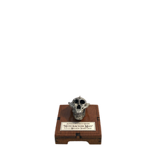 Load image into Gallery viewer, Handmade Solid Pewter Skulls