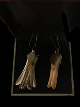 Load image into Gallery viewer, Antoinette Ratcliffe Sparrow and Chaffinch Feather Earrings