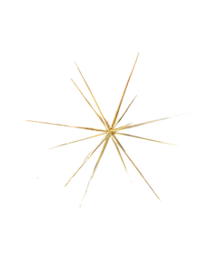 Christmas Star - Small