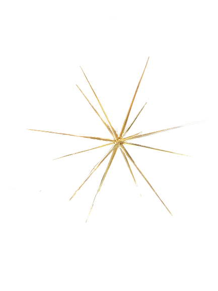 Christmas Star - Medium