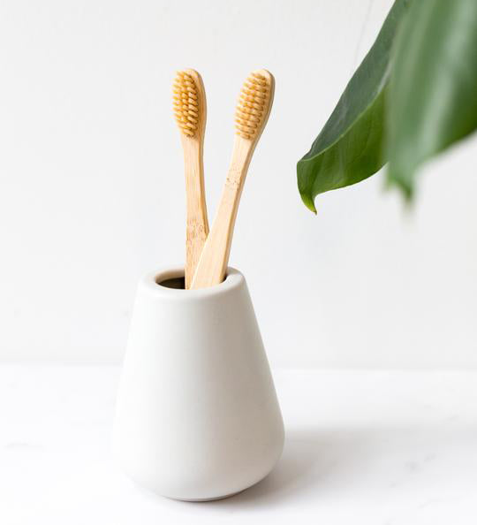 bamboo toothbrush sustainable product, green planet, compostable, reusable, bamboo, eco-friendly, ecofriendly, zerowaste, zero-waste, save the environment, save the planet,