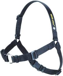 SENSE-ation® Dog Harness