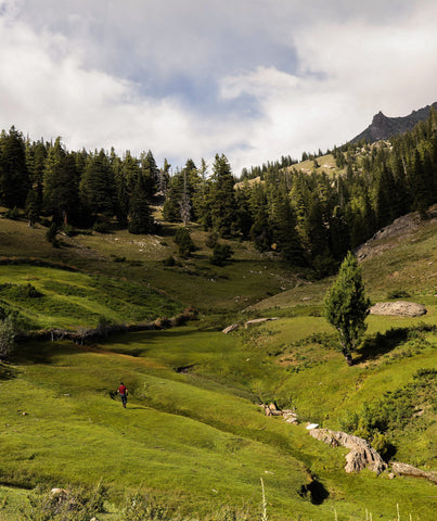 pastureland and green hills in afghanistan