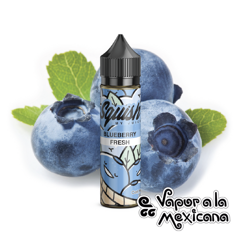 Blueberry Fresh 30ml | Squish | Vapor a la Mexicana